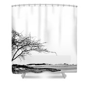 Lonely.. Shower Curtain