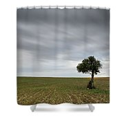 Lonely Olive Tree With Moving Clouds Shower Curtain
