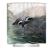 lonely Penquin Shower Curtain