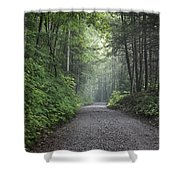 Lonely Road Shower Curtain