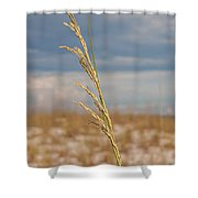 Lonely Sea Oat Shower Curtain