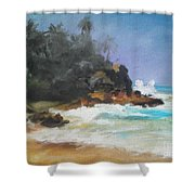 Lonely Sea Shower Curtain
