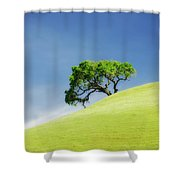 Lonely Summer Shower Curtain