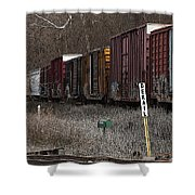 Lonely Traveler Shower Curtain