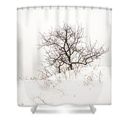 Lonely Tree On A Hill Shower Curtain