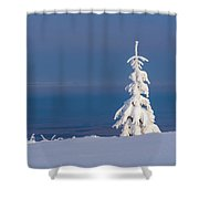 Lonely Tree On A Mountain Top Shower Curtain