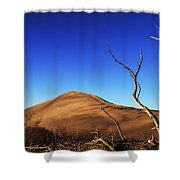 Lonely Bare Tree And Sanddunes Shower Curtain