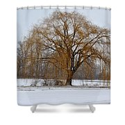 Lonely Winter Shower Curtain