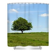 Loner Shower Curtain