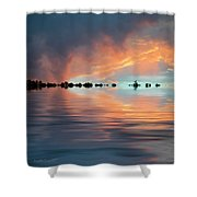 Lonesome Bird Shower Curtain
