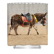 Lonesome Donkey Shower Curtain