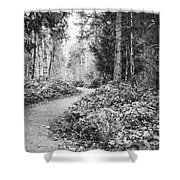 Long And Winding Path Shower Curtain