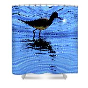 Long-billed Diwitcher Shower Curtain