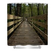 Long Boardwalk Through The Wetlands Shower Curtain