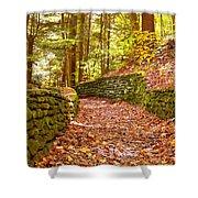 Long Fall Walk  Shower Curtain
