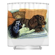 Long-haired Dachshund Watercolor Shower Curtain