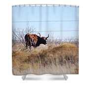 Long Horn Shower Curtain
