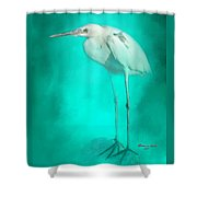 Long Legs Shower Curtain