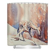 Long Night Out Shower Curtain