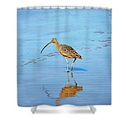 Long Nose Shower Curtain