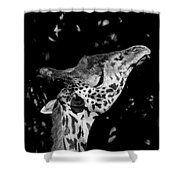 Long Reach Shower Curtain