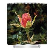 Long Stemmed Rose Shower Curtain