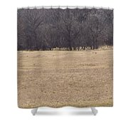 Long Trail Home Shower Curtain