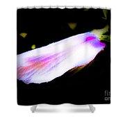 Long Unopened Hibiscus Flower Shower Curtain