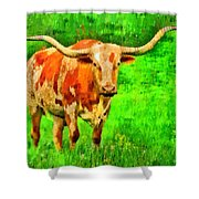Longhorn 2 - Pa Shower Curtain