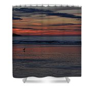 Longsands Dawn Shower Curtain