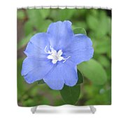 Lonly Blue Flower Shower Curtain
