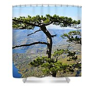 Look At The Pine Trees And The Lake Shower Curtain