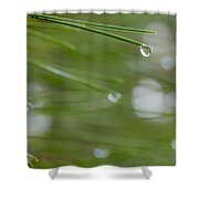 Look At The World Through Drop Shower Curtain