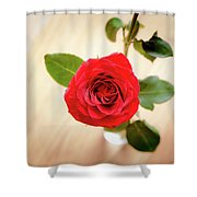 Look Down On A Rose Shower Curtain