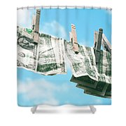 Look How Much A Dollar Buys Shower Curtain