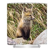 Look-out Shower Curtain