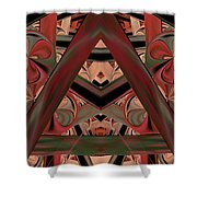 Look Within - Abstract Shower Curtain