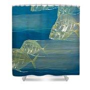 Lookdown Fish Selene Sp. In Motion Shower Curtain