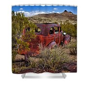 Looking At Lizard Mountain Shower Curtain