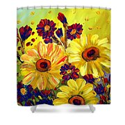 Looking At Sun  Shower Curtain