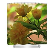 Looking Cool Shower Curtain