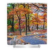 Looking Down A Trail On Bear Mountain New York Shower Curtain