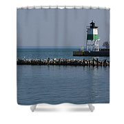 Looking Far Shower Curtain