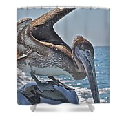 Looking For Leftovers Shower Curtain