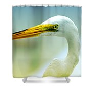 Looking For The Catch Shower Curtain