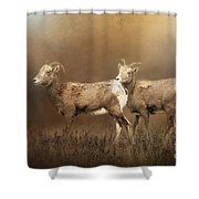 Looking For The Herd Shower Curtain