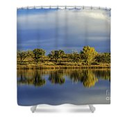 Looking Glass Shower Curtain