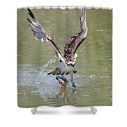 Looking Good Shower Curtain