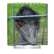 Looking Out Shower Curtain