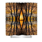 Looking Through The Trees Abstract Fine Art Shower Curtain